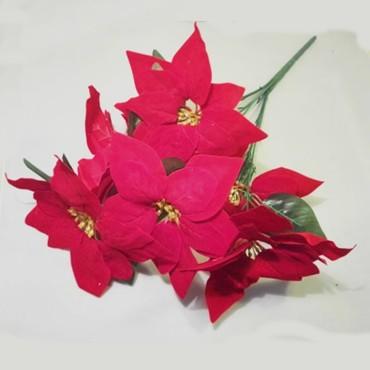 Gwiazda betlejemska 9 kwiatów