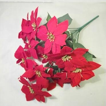 Gwiazda betlejemska 12 kwiatów