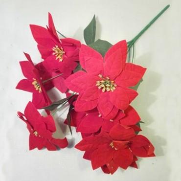 Gwiazda betlejemska 7 kwiatów