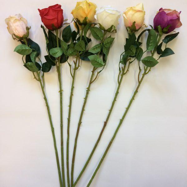 Kwiat pojedynczy róża